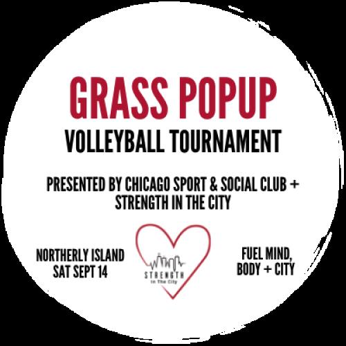 Grass Volleyball Logo